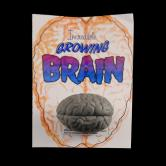 GROWING BRAIN
